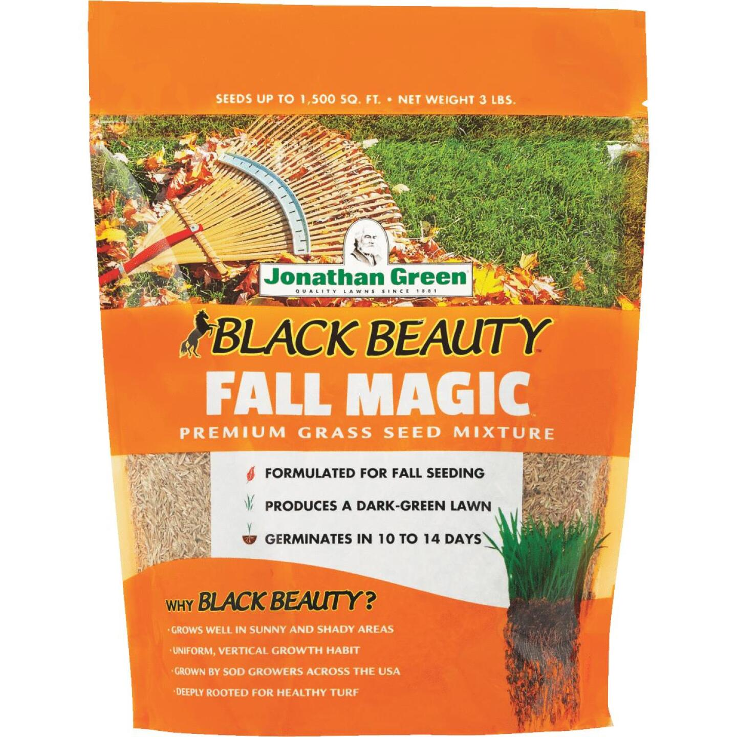 Jonathan Green Black Beauty 3 Lb. 750 Sq. Ft. Coverage Sun & Shade Grass Seed Image 1